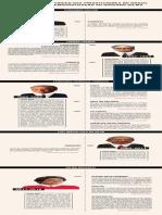 infográfico-privatização-no-brasil