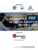 XIXPDESistemasIntegradosdeGestion21112020.pdf