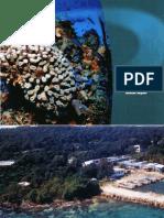 Discovery Bay Marine Laboratory Annual Report 2004-05