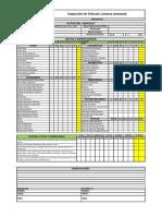CHECK-LIST CAMIONETAS TOZZI.pdf