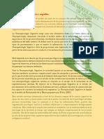 Neuropsicología dinámica y cognitiva