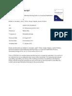 FBR-Biomass-Gasification