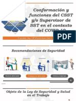 PRESENTACION CSST.pdf