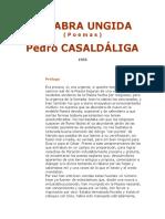 Poemas-Pedro-Casaldáliga
