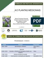Fitoterapia Apresentacao Curso PICS Eloisa Pimentel