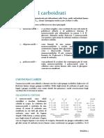 I carboidrati completo.pdf