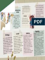 componentes del lenguaje (n).pdf