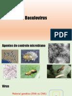 Baculovírus