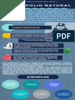 MONOPOLIO NATURAL- infografia