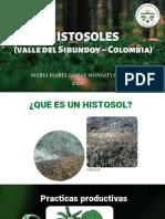 HISTOSOLES (Colombia) (1)
