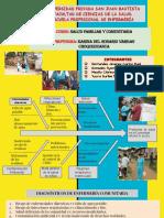 DIAGNOSTICOS COMUNITARIOS.pdf