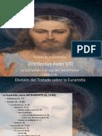 13._Eucaristia_Intellectus_Fidei_VIII.pptx