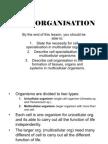 Cell Organisation(handout)
