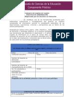 DIARIO DE CAMPO -PRACTICA DE OBSERVACIÓN(1)
