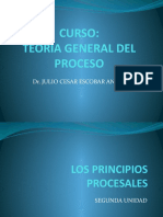 2 principios procesales.pptx