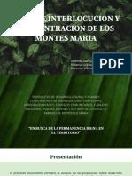 MESA DE INTERLOCUCION.pdf