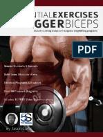 20 Essential Exercises for Bigger Biceps