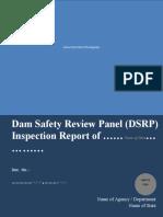 format-dsrp-report-drip2 (1).doc