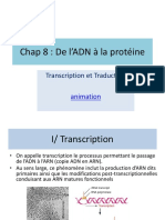 bcm_7_transcription_traduction