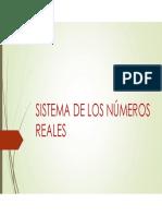 C1 Sistema de los números reales.pdf
