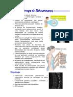 6. Doença de Scheuermann