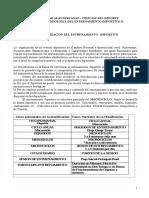 periodizacion  mesociclos  work