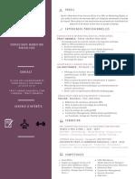 Consultant Marketing Digital / SEO