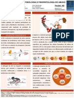 45 - Eritropoietina.pdf