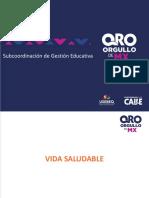 Vida Saludable PPT (1).pdf