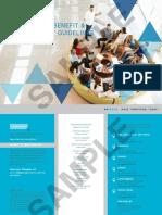 Global Benefits & Employment Guideline 2017_sample