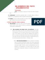 ESQUEMA NÚMERICO DEL TEXTO ARGUMENTATIVO- AVANCE (1)