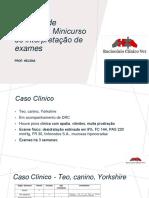Caderno de exercícios Minicurso de interpretação de exames.pdf