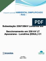 RAS_APUCARANA.pdf