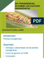 Plantas Trangenicas - Presentacion