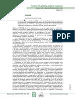 Dirección Normativa.pdf