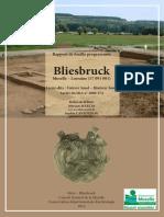 Bliesbruck, Zone de Restitution, Rapport de Fouille Programmée