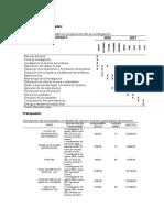 Cronograma y presupuesto APA