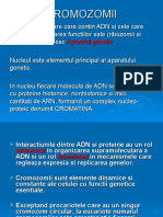 CROMOZOMII COMPLET (1)