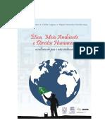 direito internacional e paz perpetua Livro UCS