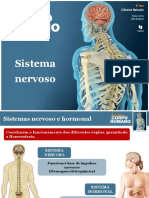 Sistema nervoso (1).pdf