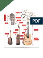 anatomia della chitarra
