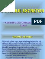 11.-SISTEMUL EXCRETOR