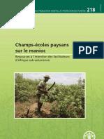 Champ école paysan manioc