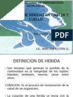 20082014_CURACIONES CABEZA Y CUELLO (1)