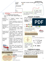 6° GTA CONCEPTOS BASICOS DE FUNCIONES 1