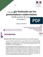 3-dgs-_strategie_pe.pdf