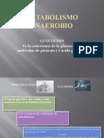 Metabolismo anaerobio GLUCOLISIS