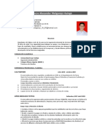 Curriculumedinson.docx
