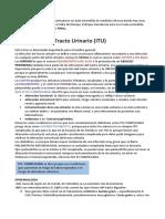 INFECCIÓN DEL TRACTO URINARIO (1)