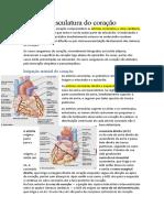 Vasculatura do coração.docx